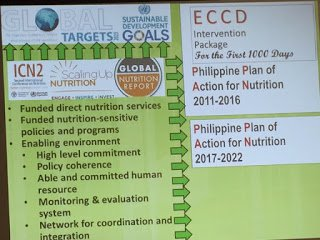 GNR as an input to Philippine Plan of Action for Nutrition