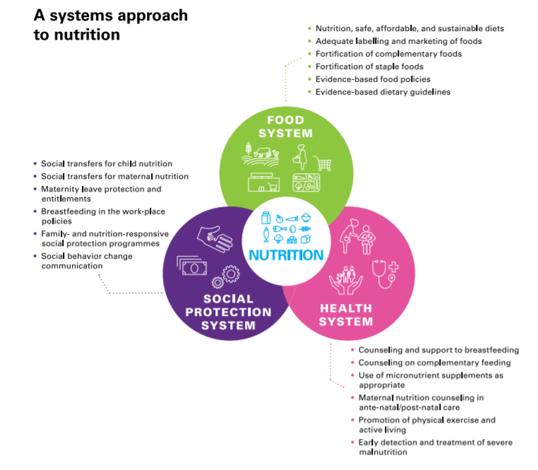 UNICEF Systems Approach to Nutrition Graphic
